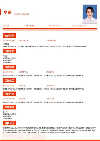 项目管理在线简历模板缩略图